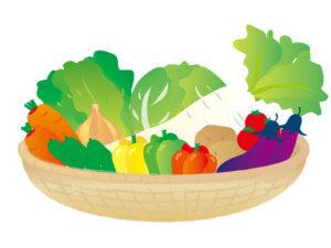 多くの野菜たち