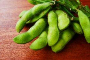とりたての枝豆