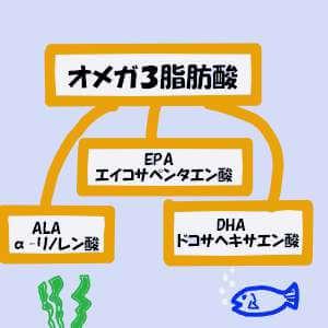 オメガ3脂肪酸の説明